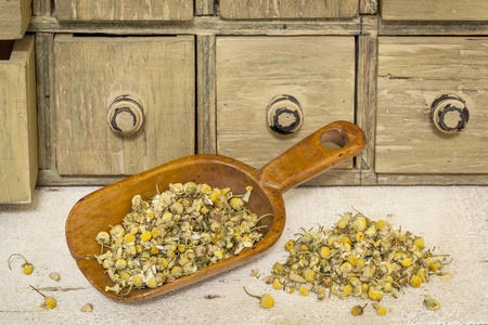 organic chamomile herbal tea - rustic wooden scoop and a pile on rough white painted barn wood with a primitive apothecary drawer cabinet Stock Photo - 20440010