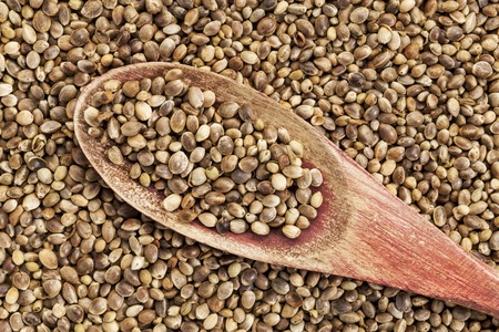background of organic dried hemp seeds with a rustic wooden spoon Stock Photo - 20461866