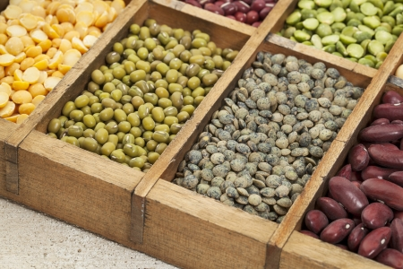 legumes in box abstract with a selective focus on French green lentil Stock Photo - 20471534
