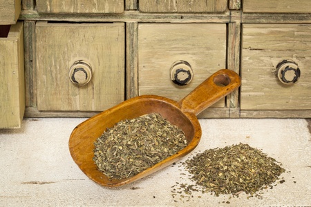 peppermint herbal tea - a pile and rustic wooden scoop with a primitive apothecary drawer cabinet in background Stock Photo - 20832336