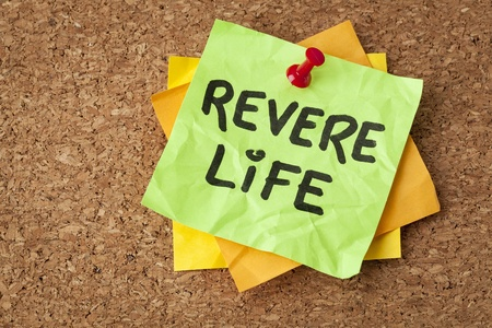 revere: revere life - motivational reminder on a green sticky note