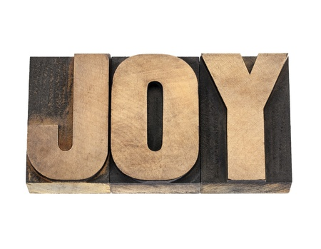 prinitng block: joy word  - isolated text in vintage letterpress wood type
