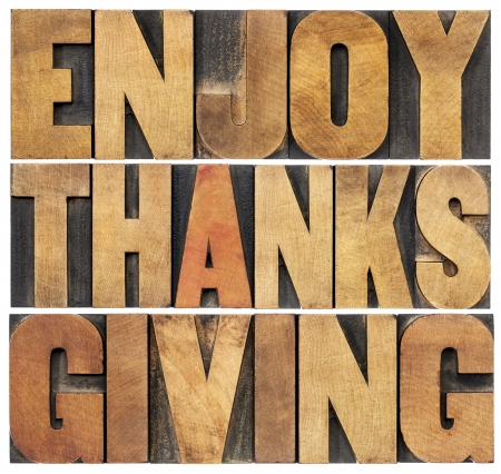 Enjoy  Thanksgiving  - isolated text in vintage letterpress wood type blocks scaled to a rectangle shape Stock Photo - 22443366