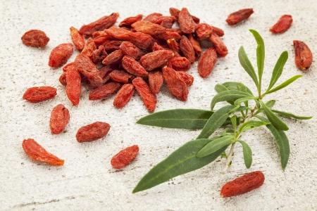 dried Tibetan goji berries (wolfberry) with a fresh goji leaf on white rough wood surface Stock Photo - 22443389
