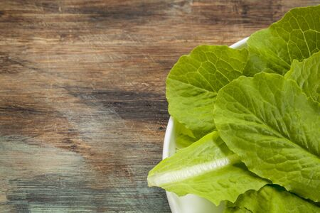 romaine: fresh green leaves of romaine lettuce on a plate against a grunge scratched wood
