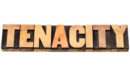 tenacity: tenacity word - isolated text in vintage letterpress wood type Stock Photo