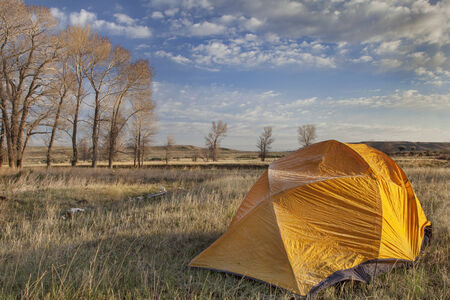 cottonwood  tree: a  tent covered by frost in early morning next to stand of cottonwood in North Platte River valley in Wyoming