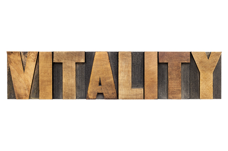 vitality  word - isolated text in letterpress wood type Stock Photo - 23649799