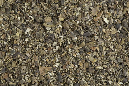 Bdried bladderwrack seaweed (Fucus vesiculosus)  rich in iodine. Bladderwrack is a brown seaweed harvested from cool ocean waters around world, easily recognized by its air-filled thalli or %u201Cbladders%u201D that keep the plant afloat. Stock Photo - 24959901