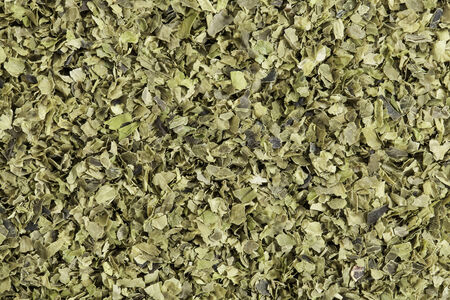 dried  of sea lettuce  seaweed (Ulva lactucas). One of the most familiar of shallow salt water seaweeds, sea lettuce is a favorite among manatees and humans alike and can even be used as an ingredient in ice cream. It is very high in iron, protein, iodine Stock Photo - 24959908