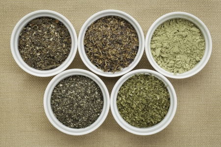 bowls of seaweed diet supplements (bladderwrack, sea lettuce, kelp powder, wakame and Irish moss) - top view Stock Photo - 24985547