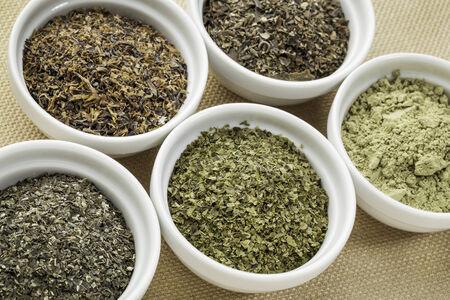 bowls of seaweed diet supplements (bladderwrack, sea lettuce, kelp, wakame and Irish moss) Stock Photo - 24985548