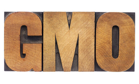 GMO (genetically modified organism) acronym  - isolated text in vintage letterpress wood type Stok Fotoğraf