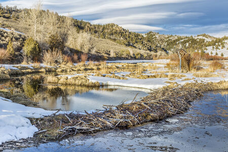 ice dam: winter on beaver swamp in Northern Park, Colorado at the entry to the Gateway Canyon near Cowdrey