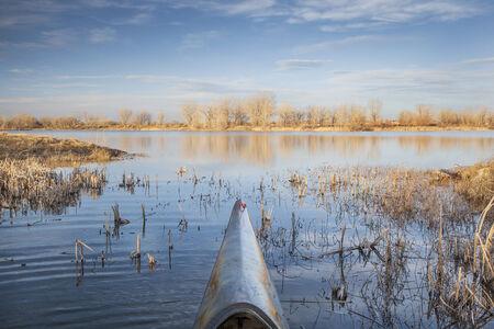 reed: starting paddling season - a bow of  slim racing kayak entering lake in springtime