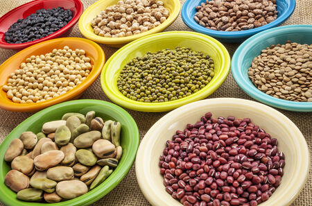 ingedient: variety of legumes (fava bean, mung bean, soy, green lentils, adzuki, black, pinto, chickpea) in colorful ceramic bowls on canvas