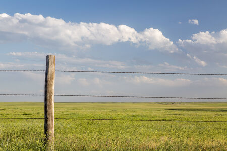 barbed wire cattle fence in Pawnee National Grassland in northern Colorado photo