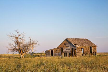 homestead: old abandoned homestead with hawk nests on eastern Colorado prairie near Galeton in sunset light Stock Photo