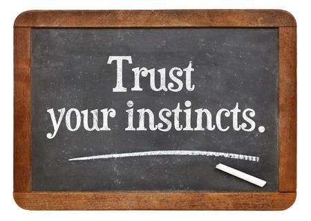 instincts: trust your instincts  - advice or motivational reminder  on a vintage slate blackboard