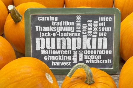pumpkin word cloud on a slate blackboard surrounded by pumpkins photo