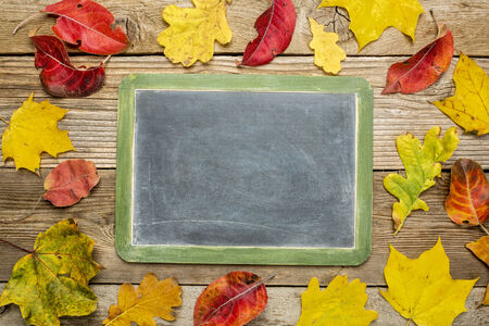 blank slate blackboard against rustic weathered wood planks with colorful dried leaves photo