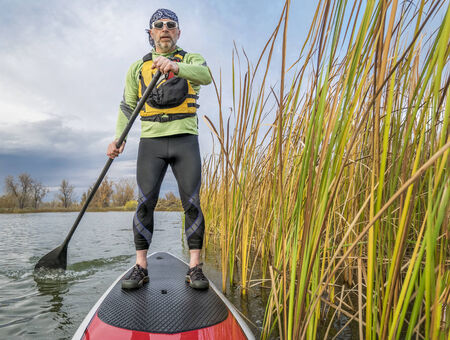 paddleboard: senior paddler in life jacket enjoying stand up paddling on lake, fall scenery with cattail in Fort Collins, Colorado Stock Photo