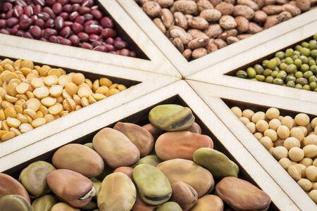 adzuki bean: triangles - bean, lentil and pea abstract (fava, pinto, adzuki bean, green and French lentils, yellow pea, soybean), focus on fava beans Stock Photo