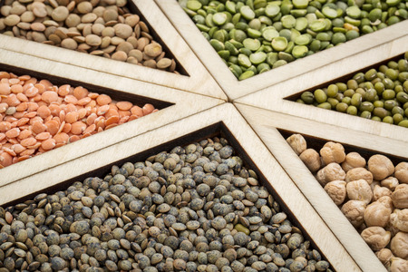 adzuki bean: triangles - bean, lentil and pea abstract (adzuki bean, chickpea, green, red  and French lentils, green pea), focus on French lentils