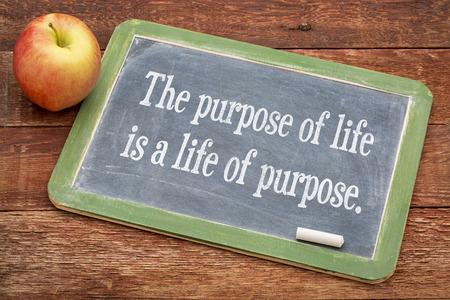 lo scopo della vita è una vita di scopo - il testo su una lavagna di ardesia contro il legno fienile rosso Archivio Fotografico