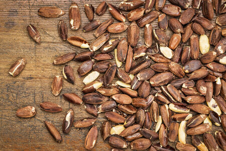 pili: roasted pili nuts, grown in Philippines, against a grunge wood background