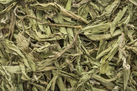 sweetener: stevia dried leaves background - natural sweetener, sugar substitute Stock Photo