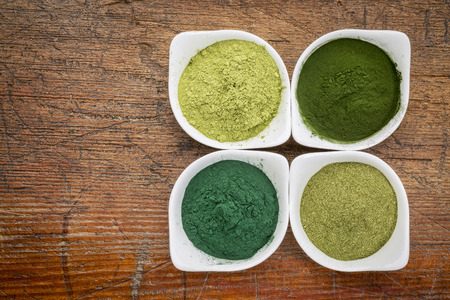 algas marinas: cuatro verdes suplemento polvos alimentarios saludables (espirulina, chlorella, pasto de trigo y de la hoja de moringa) en cuencos blancos en una madera del grunge