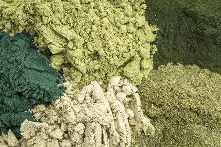 alga marina: fondo de cinco polvos verdes saludables en la dieta de suplementos (espirulina, chlorella, hierba de trigo, algas marinas y de la hoja de moringa) Foto de archivo