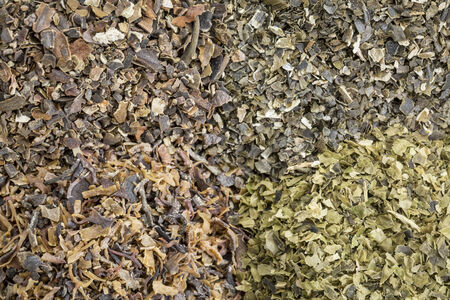 wrack: background of four seaweed dietary supplements: Irish moss, wakame, sea lettuce and bladderwrack