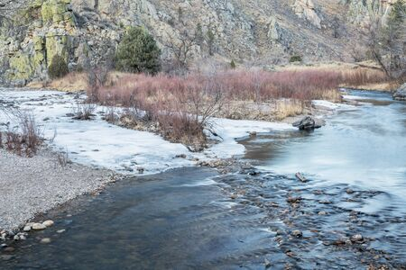 fort collins: Cache la Poudre River in winter scenery at confluence with its North Fork , Gateway Natural Area near Fort Collins, Colorado