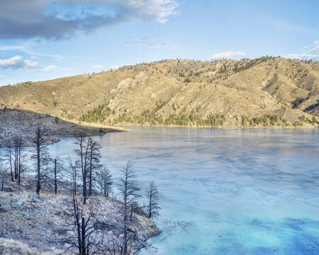 fort collins: pine trees bunt by wildfire on the shore of frozen Seaman Reservoir in Rocky Mountains near Fort Collins, Colorado