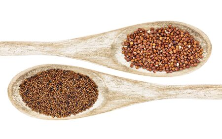 red quinoa: kaniwa (bottom) and red quinoa (top) grain on wooden spoons isolated on white