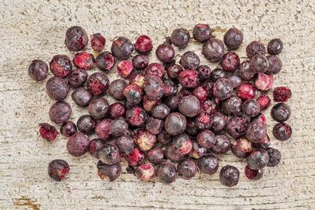 freeze dried: Congele sa�co secas contra la madera del granero r�stico. Las bayas de sa�co son ricos en antioxidantes y minerales que las hacen perfectas en la lucha contra el resfriado com�n.