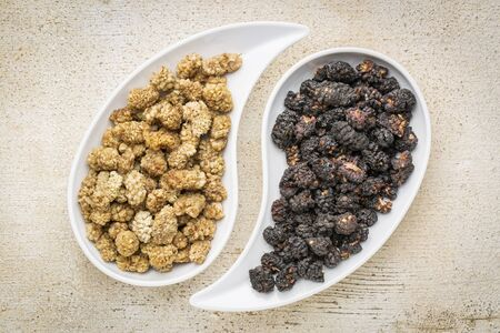 superfruit: black and white mulberry - sun-dried fruit on teardrop shaped bowls against rustic barn wood