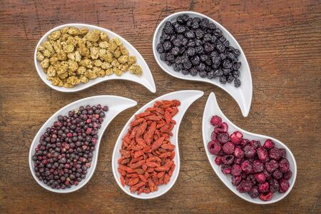 goji berry: dried superfruit collection - goji berry, white mulberry, blueberry, elderberry and cheery in teardrop shaped bowls against rustic wood