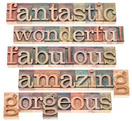 fantastic, wonderful, fabulous, amazing, and gorgeous -positive word collection - isolated text in letterpress wood type