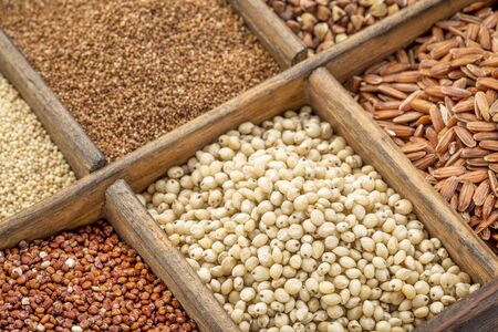 sorghum and other gluten free grains in a wooden rustic box Stock Photo
