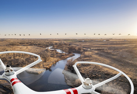 the river: A small quadcopter drone flying over river landscape with Canadian geese, focus on drone motors and propellers.