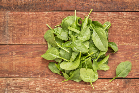 'baby spinach': fresh baby spinach leaves against rustic,  red barn wood table Stock Photo