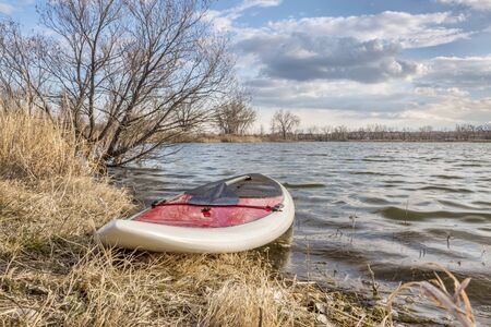 paddleboard: stand up paddleboard with a paddle on alke shore, early spring scenery - start of paddling season concept