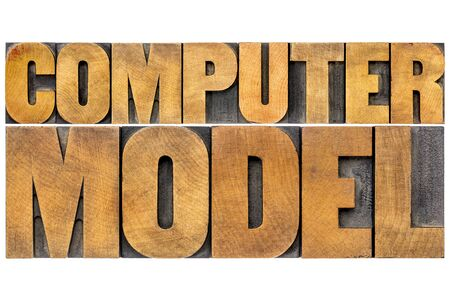 computer model: computer model typography - science or research concept -  isolated word abstract in letterpress wood type