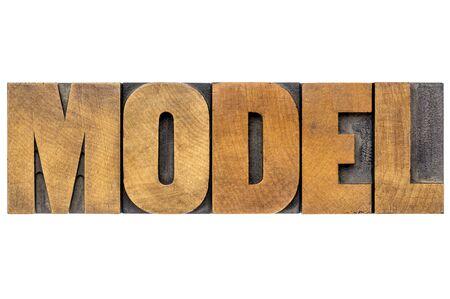 representations: model word typography - isolated text in vintage letterpress printing blocks
