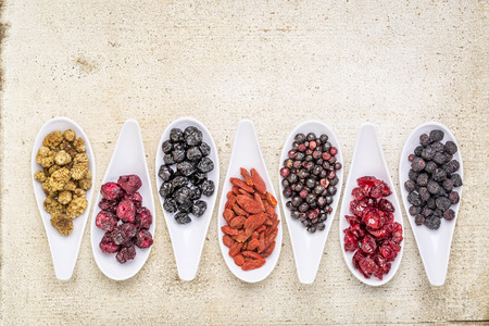 superfruit: healthy dried berry collection (blueberry, mulberry, cherry, goji, elderberry, chokeberry,) cranberry on  ceramic spoons against rustic barn wood with a copy space