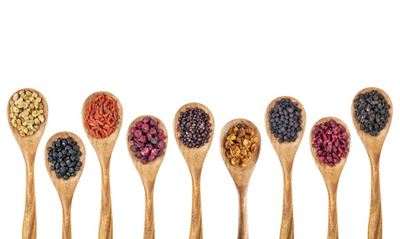 superfruit: nine healthy dried berry collection (blueberry, mulberry, cherry, goji, elderberry, chokeberry, cranberry, goldenberry) on isolated wooden spoons, top view Stock Photo