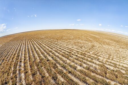 fish eye: eastern Colorado plowed field in fish eye lens perspective